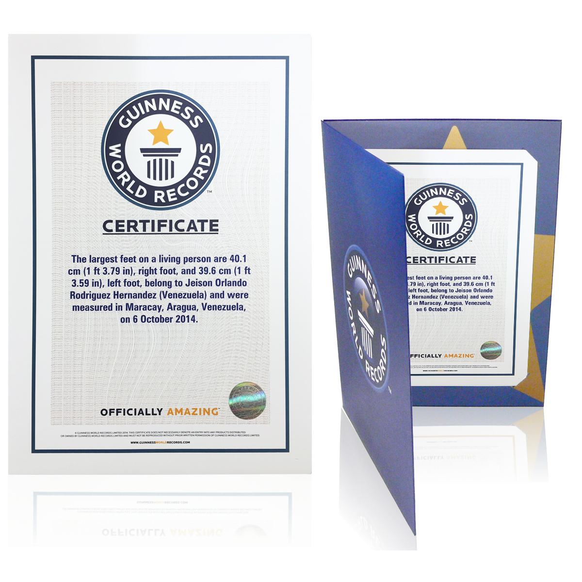 the guinness world records store certificates
